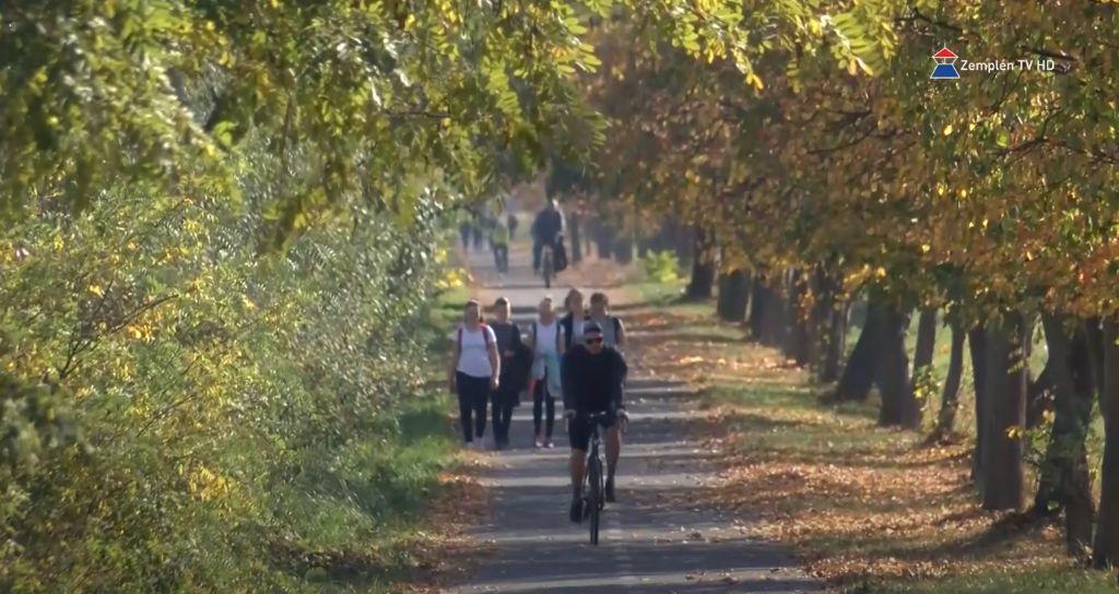 Kerékpáros, gyalogos, segédmotor kerékpáros is közlekedhet egyszerre a kerékpárúton