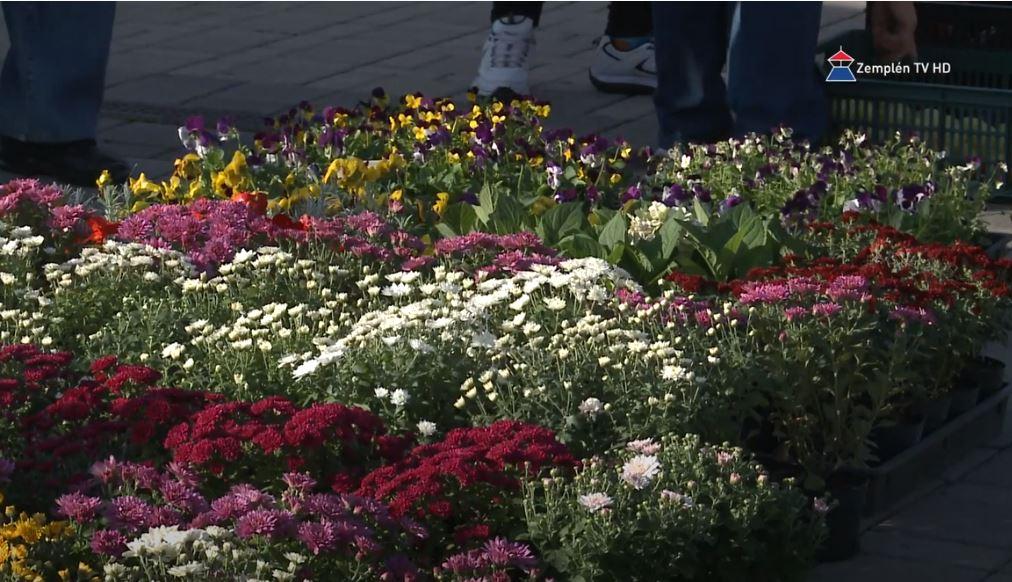 Piaci virágárusok Sátoraljaújhelyen