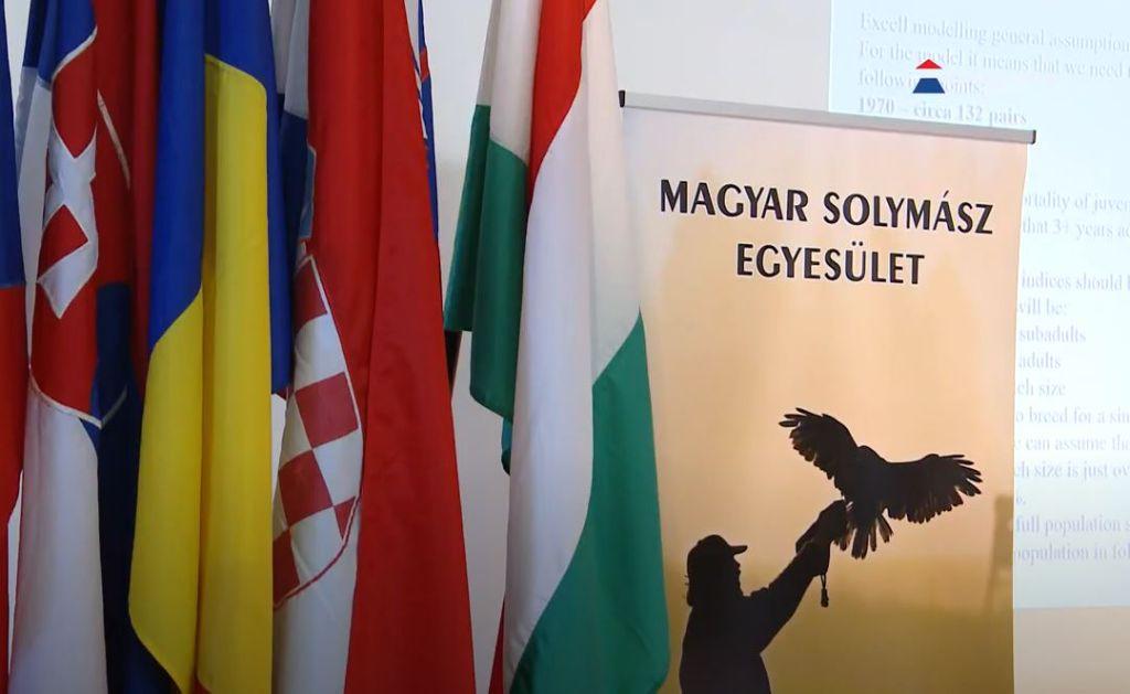 A Visegrádi Országok solymásztalálkozóját rendezték meg Sátoraljaújhelyen